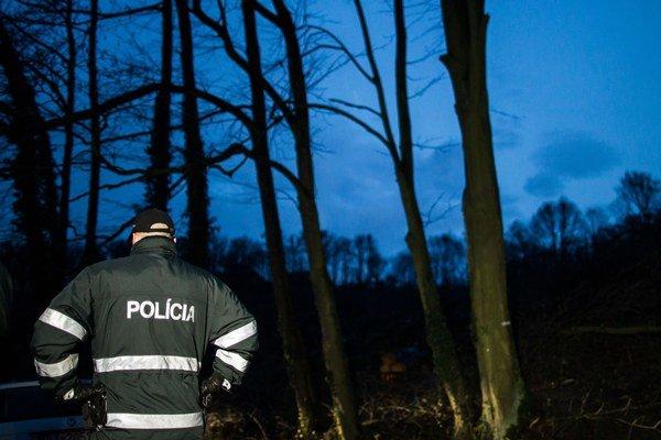 Polícia mohla výrub na Kolibe zastaviť.