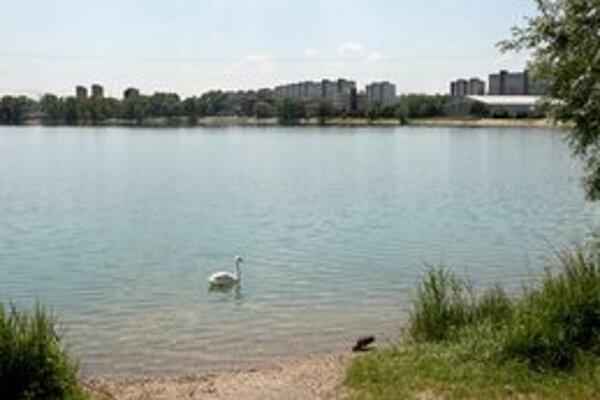 Zatiaľ nie je isté, či v jazere vyhasol život.