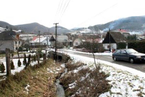 Opraviť cesty, zabezpečiť mobilný signál a vybudovať detské ihrisko - to budú najčastejšie požiadavky obyvateľov obce Kozelník na novú starostku.