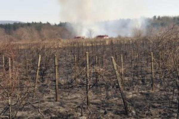 Požiar pri Zohore taktiež vznikol z vypaľovania trávy.