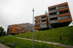 Projekt Karloveské rameno, časť už stojí v zátoke pri Dunaji.