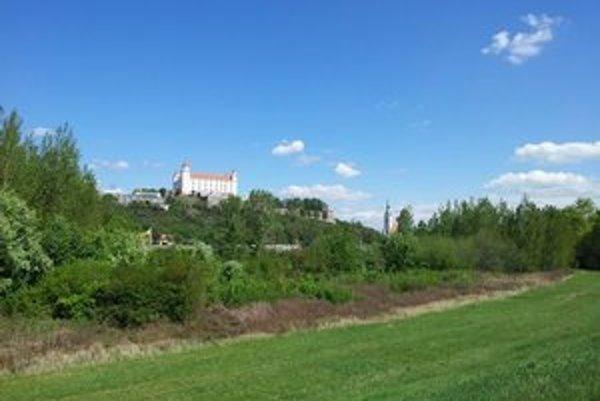 Pečniansky les sa rozprestiera na petržalskej strane Dunaja od diaľnice D2 a Incheby až po rakúsku hranicu.