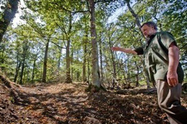 Poľovník ukazuje lesnú cestu, kde stretol medveďa.