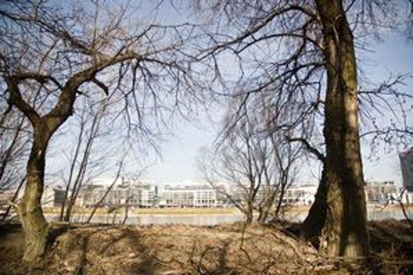 Najnovšie pribudol do zoznamu chránených areálov Soví les. Leží na Petržalskej strane Dunaja medzi Prístavným mostom a mostom Apollo.