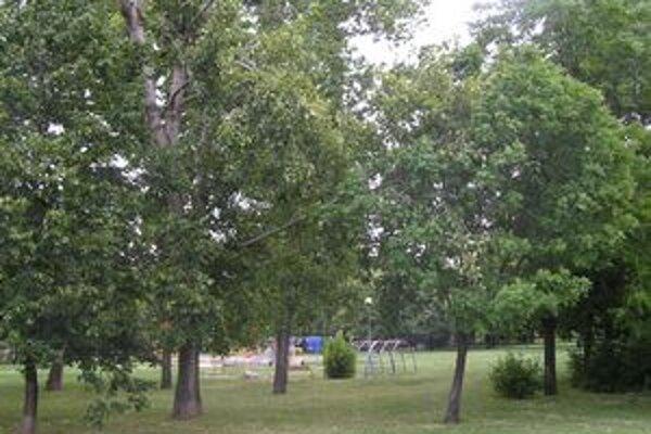 Ľudia môžu o podobe parku diskutovať na webe.