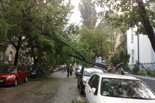 Vietor strhol strom aj pri Modrom kostolíku neďaleko Šafárikovho námestia.