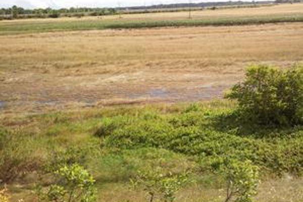 Obyvatelia Jaroviec sa sťažujú, že znečistená voda z neskolaudovanej diaľnice sa vyliala na polia a zničila im úrodu pšenice. Prekáža im aj hluk áut.