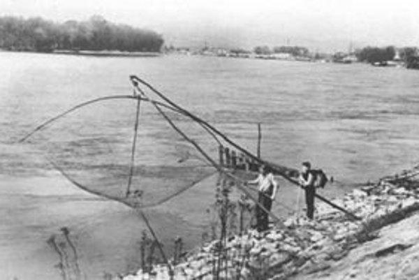 Celé storočia sa dodržiaval zvyk neloviť na Štedrý deň. Zákaz vydala kráľovná Mária Terézia. Fotografia dunajských rybárov je  z roku 1964.