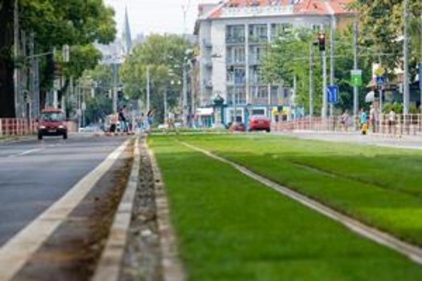 Mesto je za investíciu do zelene aj v kríze. Argumentuje, že trávnatý pás na Záhradníckej zníži hlučnosť a otrasy, žiadali si ho aj obyvatelia z okolia.