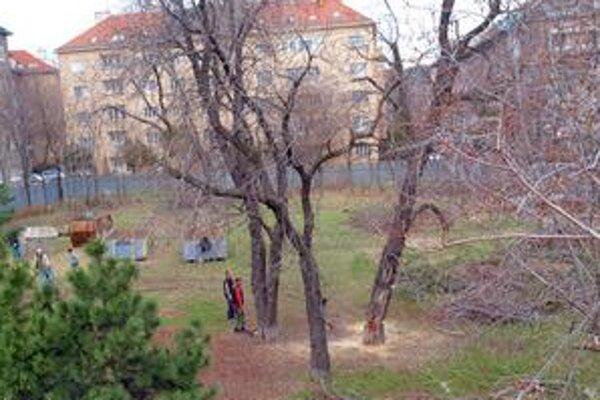 Zo 120 stromov neostalo v parku ani 40. Park kúpila spoločnosť Zipp v roku 2004, platil vtedy starý územný plán, ktorý tu určoval občiansku vybavenosť. Územný plán sa zmenil v roku 2007, územie je tu definované ako zeleň.