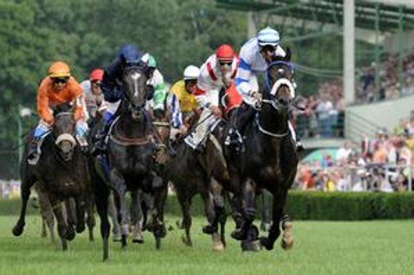 V Starom háji vybehnú tento rok kone na dráhu počas štrnástich dostihových dní.
