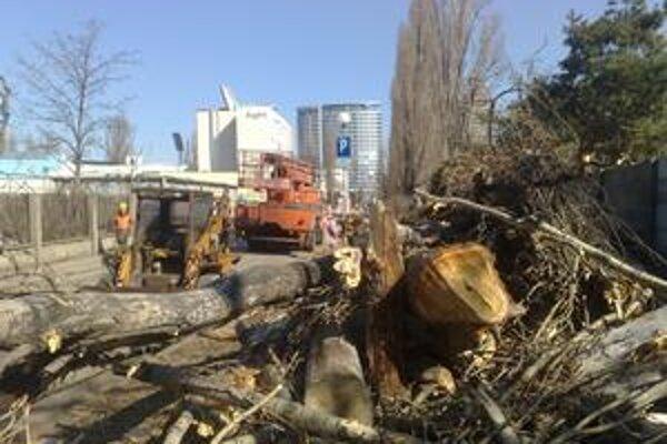 V okolí Zimného štadióna má padnúť 400 stromov, prvé boli na Kalinčiakovej ulici.