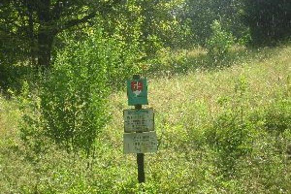Prírodná rezervácia Bujačia lúka sa niekoľko rokov nekosila, môže to znehodnotiť vzácne šafrany