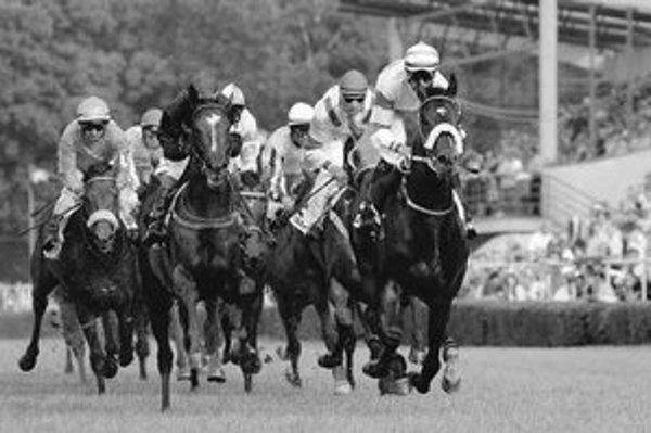 V Petržalke bude v nedeľu štartovať 71 koní.