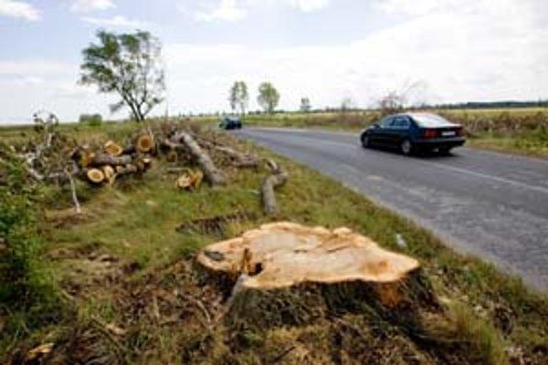 Cestnú aleju pri Slovenskom Grobe poškodila búrka, cestári dali množstvo stromov vyrúbať. Spolupracovali pri tom so štátnymi ochranármi. Tí však na posudzovanie vyslali pracovníka, ktorý nemal zodpovedajúcu odbornosť.