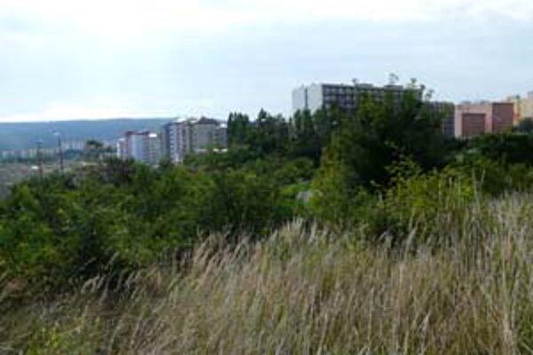 V blízkosti vznikajúcich bytov od B.O.S. Group má vyrásť polyfunkčný súbor s dvoma výškovými dominantami. V mestskej časti má pribudnúť okolo 1 400 bytov, zdravotné a administratívne priestory.