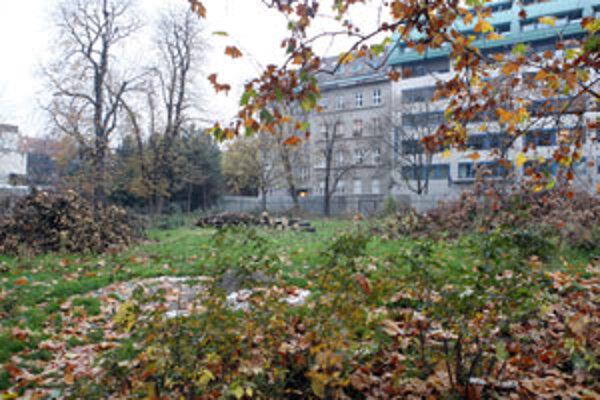 Nelegálnym októbrovým výrubom prišiel park o dvanásť stromov. Spoločnosť Strabag–Zipp nechce dnes za park iný pozemok, ale 160 miliónov korún.