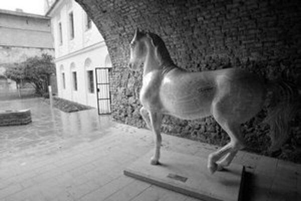 """Do priestorov znovuotvoreného Červeného raka pribudla aj socha """"novinového"""" koňa. Podľa kritikov zapadla do série gýčov v centre mesta."""