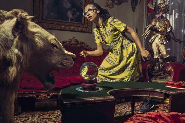Esperanza Spalding do Bratislavy prinesie svoj projekt Emily´s D + Evolution.