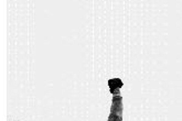 Rocky BalboaRocky Balboa. USA, 2006. Scenár a réžia: Sylvester Stallone. Hrajú: Silvester Stallone, Burt Young, Antonio Tarver, Geraldine Hughes, Milo Ventimiglia.Stalloneho filmový boxer je už zase v ringu. Najprv síce len rozochvene rozpráva návštevn