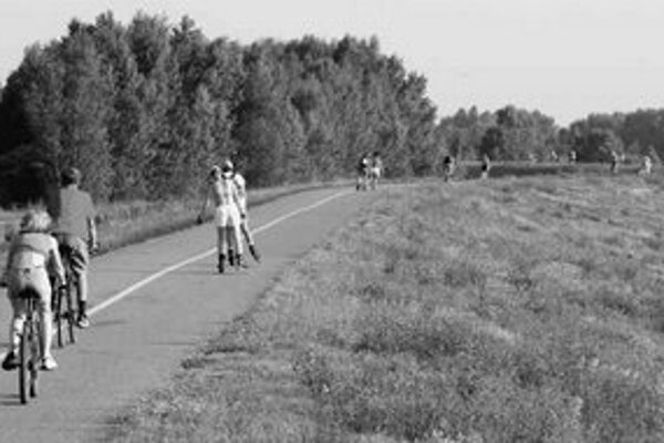 Petržalská hrádza je počas slnečných dní preplnená. Nekoordinovane a v skupinkách rozťahujúcich sa na celú šírku dvojsmernej cesty sa tu pohybuje rad zložený z korčuliarov, cyklistov, chodcov, psov. Občas po nej kľučkujú aj autá.