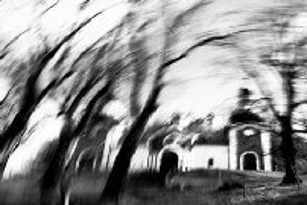 Záhrady v Michalskom dvoreV Galérii Michalský dvor na Michalskej 3 otvorili výstavu obrazov Jitky Bezúrovej-Moškovej (1958) a fotografií Iva Bindera. Kurátor Bohumír Bachratý predstavuje výber tvorby maliarky z posledných dvoch rokov. Názov výstavy Moje