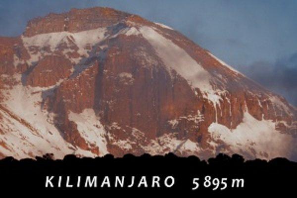 Výstupom na horu Kilimandžáro prechádzajú lezci cez päť vegetačných pásiem.