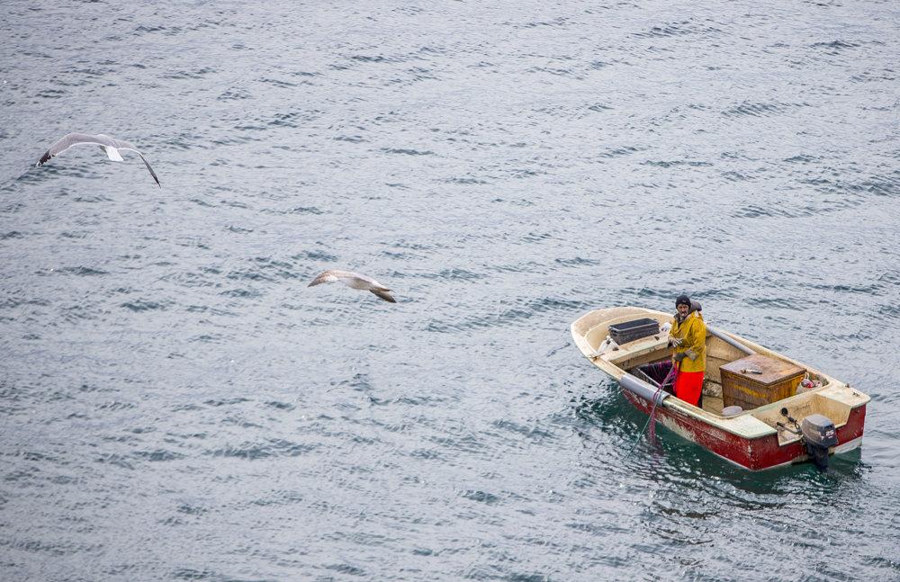 Muž, chytajúci ryby do siete pri meste Opatija.