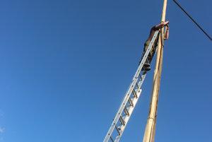 Obrovitánsky máj meral 18 metrov.