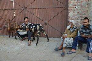 V bočných uličkách Džajpuru.