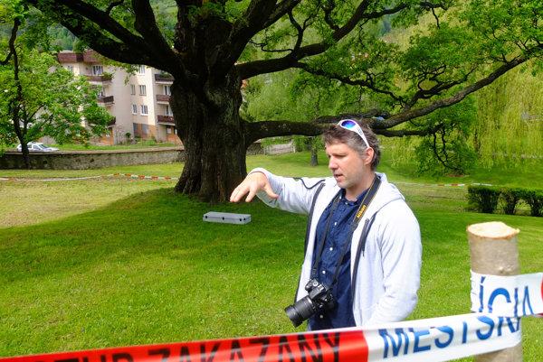 Arborista Marcel Trnovský hovorí, že ošetrenie dubu by malo byť veľmi citlivé.