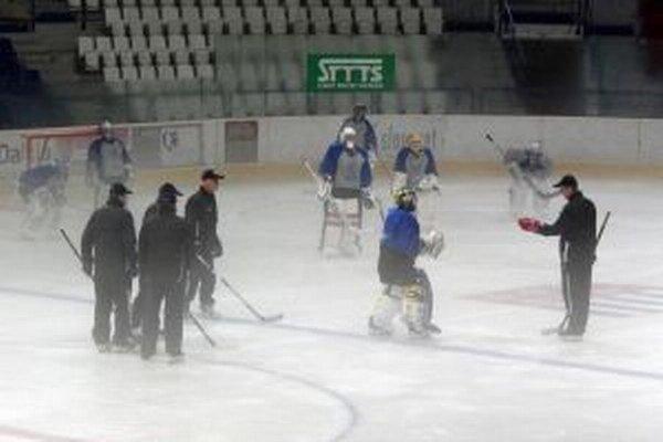 Hokejová škola brankára.