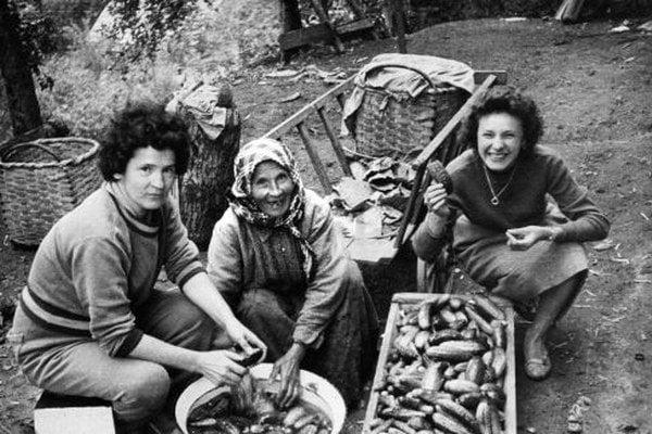 Záber z roku 1972 - príprava uhoriek na trh. Je to jedno z posledných období, kedy boli uhorky zo Sásovej známe široko - ďaleko.