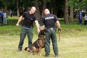 Detskú pozornosť upútali ukážky policajtov so psami.