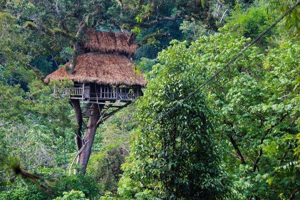 Do hotela na strome sa dá dostať po lanovej dráhe.
