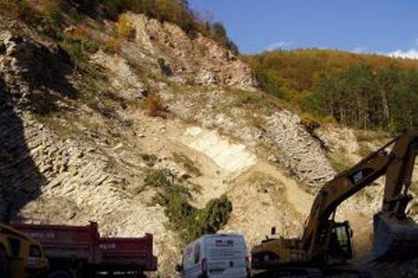 Momentálne sa v Snežnici ťaží sa spracováva kameň na výstavbu rýchlostných ciest a diaľnic.