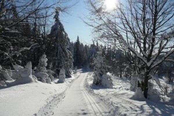 Bežkári majú dôvod na radosť. Už oddnes sa začína s úpravou celého hrebeňa Beskydsko – Javorníckej lyžiarskej magistrály.