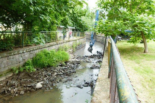 Úsek kanála Perec v Leviciach počas leta čistili.