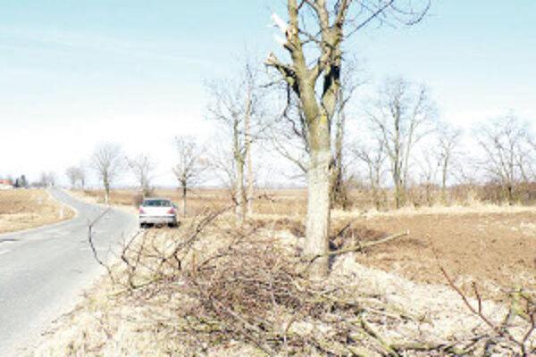 Desiatky drevín na štvorkilometrovom úseku medzi Málašom a Nýrovcami prešli jarnou údržbou.