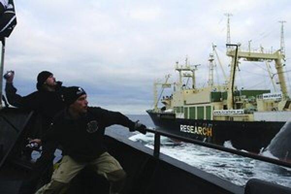 Aktivisti bojujú s Japoncami o veľryby.