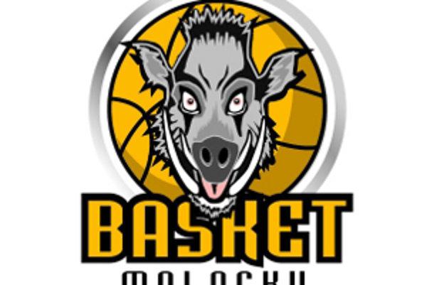 Malackí basketbal hľadá talenty.