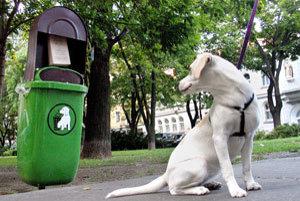 Psie exkrementy by už v Senici na uliciach byť nemali.