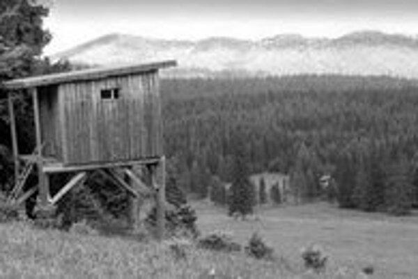 Nový zákon o lesoch podľa ochranárov umožní zvýšenie ťažby dreva, aj tzv. holorub. Teda zničenie lesa na súvislom území ,ako je napríklad lyžiarsky svah. Ministerstvo pôdohospodárstva to odmieta.
