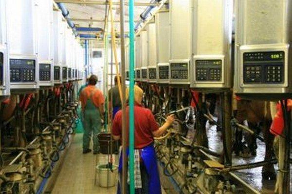 V Sklabini ročne vyrobia 2,8 milióna litrov mlieka.