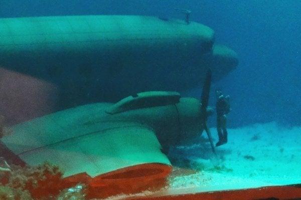 Dakotu v akváriu študuje miniatúrny potápač.