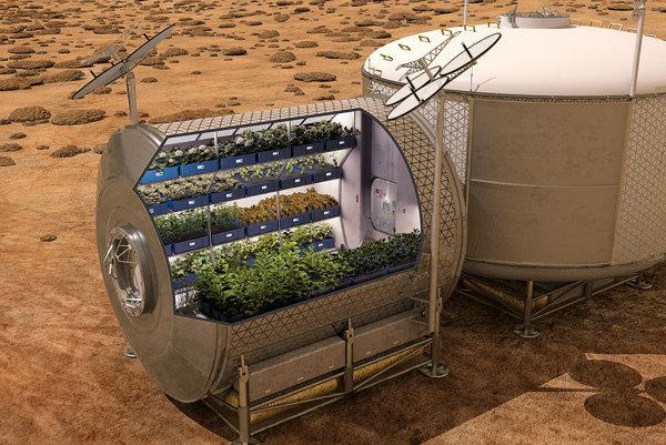 Aj takto by mohli vyzerať záhradky, ktoré by v budúcnosti produkovali plodiny na Marse.
