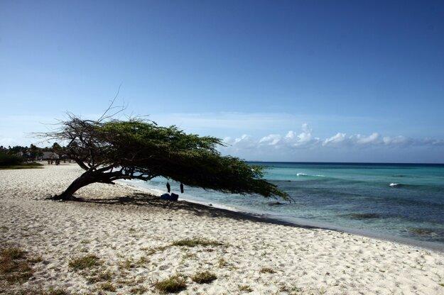 Pláž na ostrove Aruba, Karibik