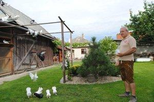 Pri akrobatoch. Milan Pastor a jeho holuby.
