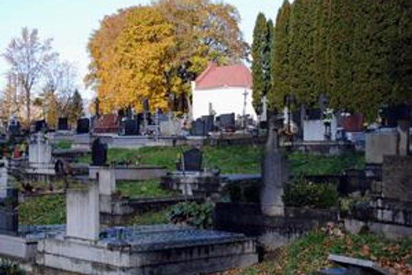 Starý cintorín. Hoci tu už mesto vykonalo prerezávku stromov, stále sa tu nachádza množstvo lístia.