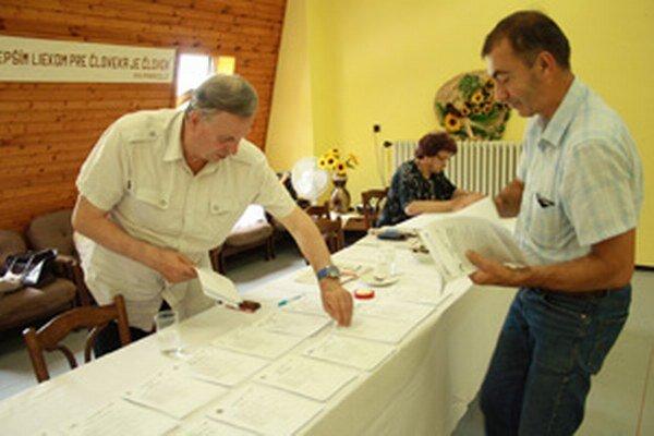 Voľby do Európskeho parlamentu na Bôriku.